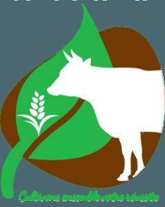 4e & 3e découverte professionnelle | Bac Pro CGEA par alternance | Formation agricole pour adulte